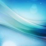 «Реализация ФГОС на уроках русского языка и литературы: проблемы и перспективы»